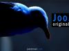 JooZz Bird.png