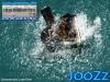 joozz-at-fdi-sept-15